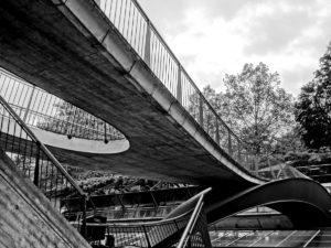 interconnected bridges black and white